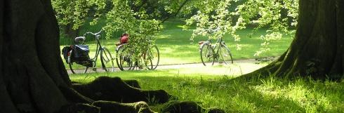 Parklandschaft Leer